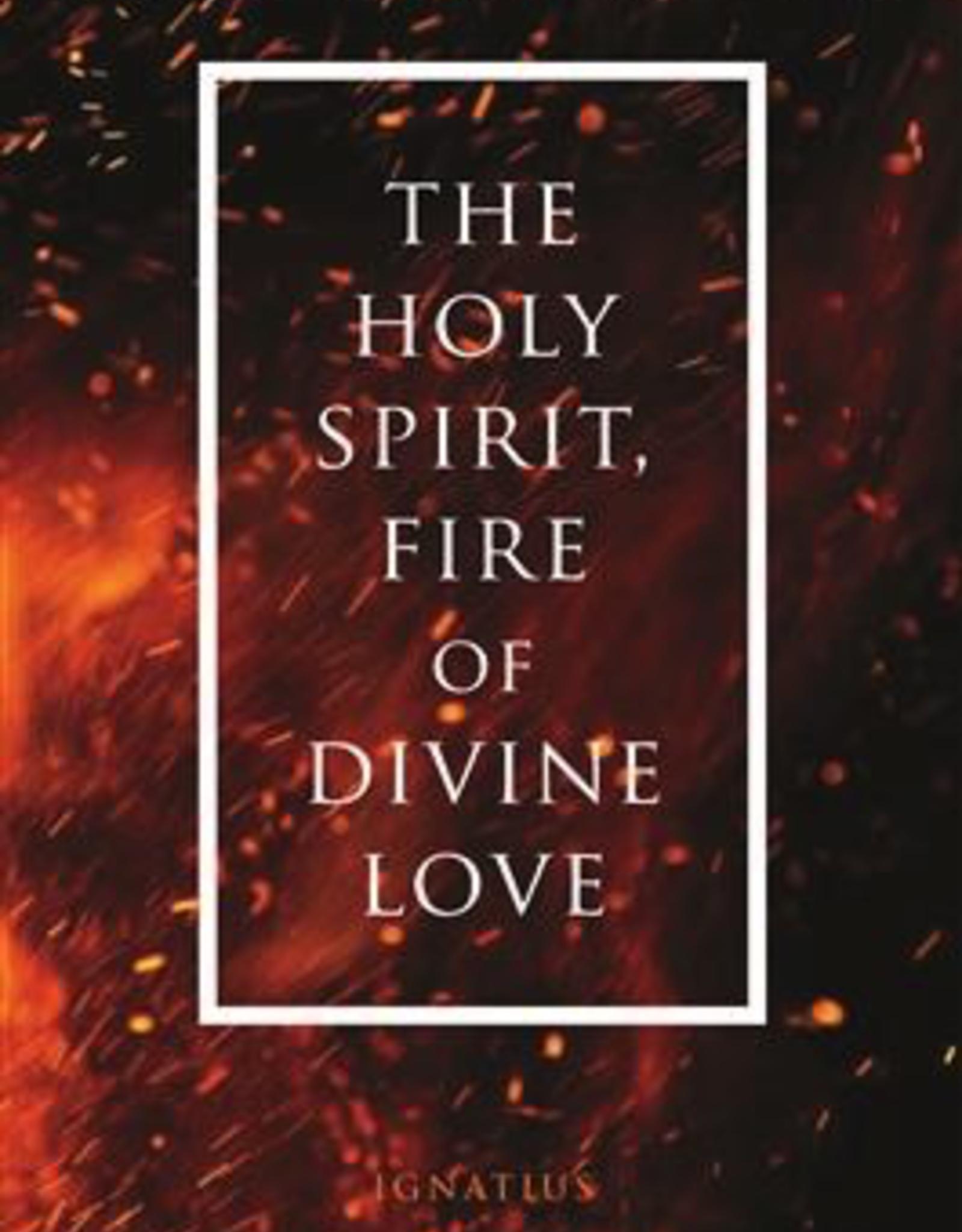 Ignatius Press Holy Spirit, Fire of Divine Love, by Fr. Wilfrid Stinissen (paperback)
