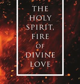 Ignatius Press Holy Spirit, Fire of Divine Love, by Fr. Wilfrid Stinissen (paperback)