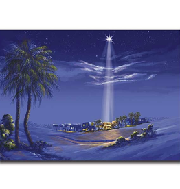 Printery House Star of Bethlehem Christmas Cards (18 cards/19 envelopes per pkg)