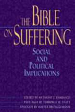 Paulist Press The Bible on Suffering:  Social and Political Implications, by Anthony J. Tambasco (paperback)