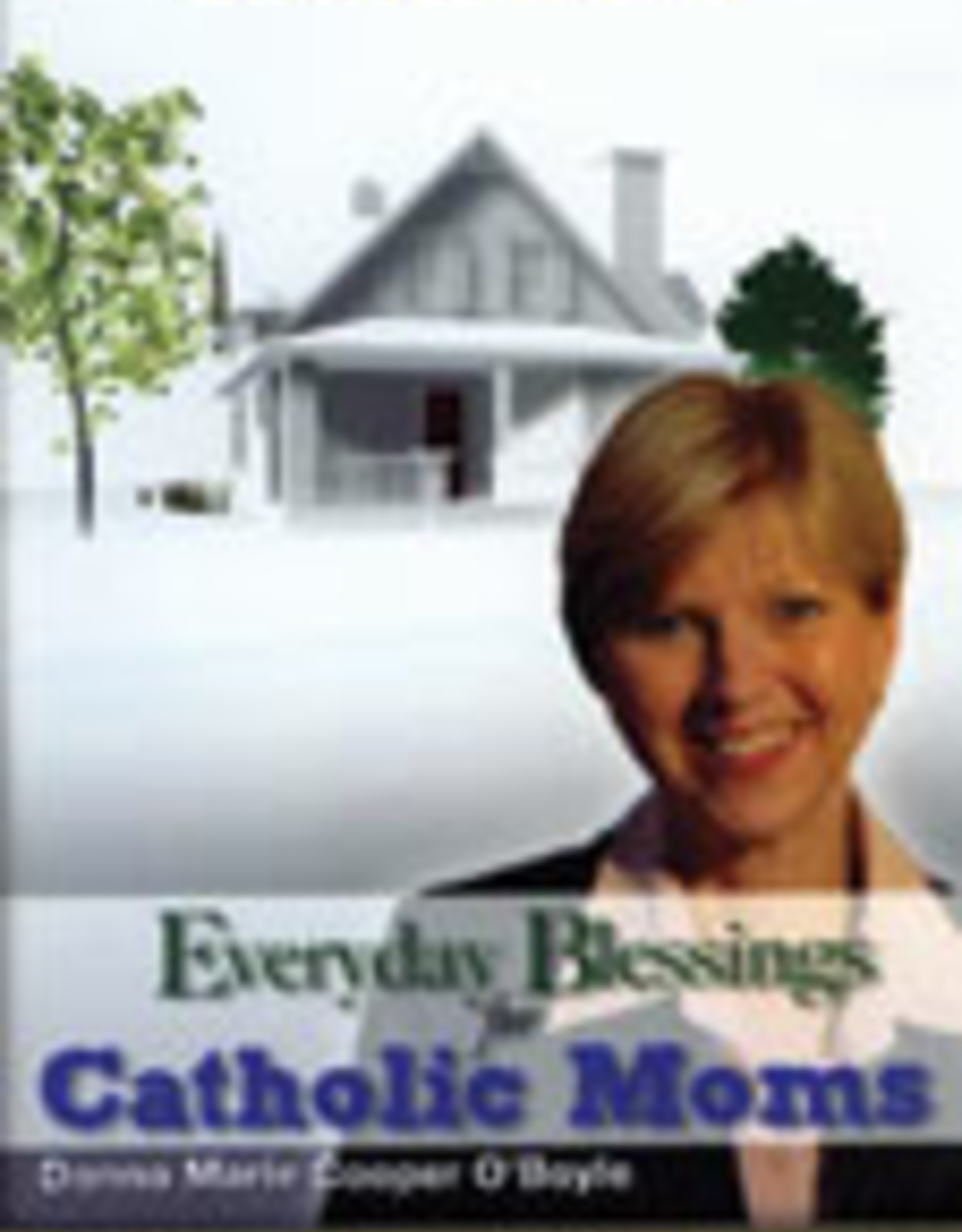 Ignatius Press Everyday Blessings for Catholic Moms (DVD)