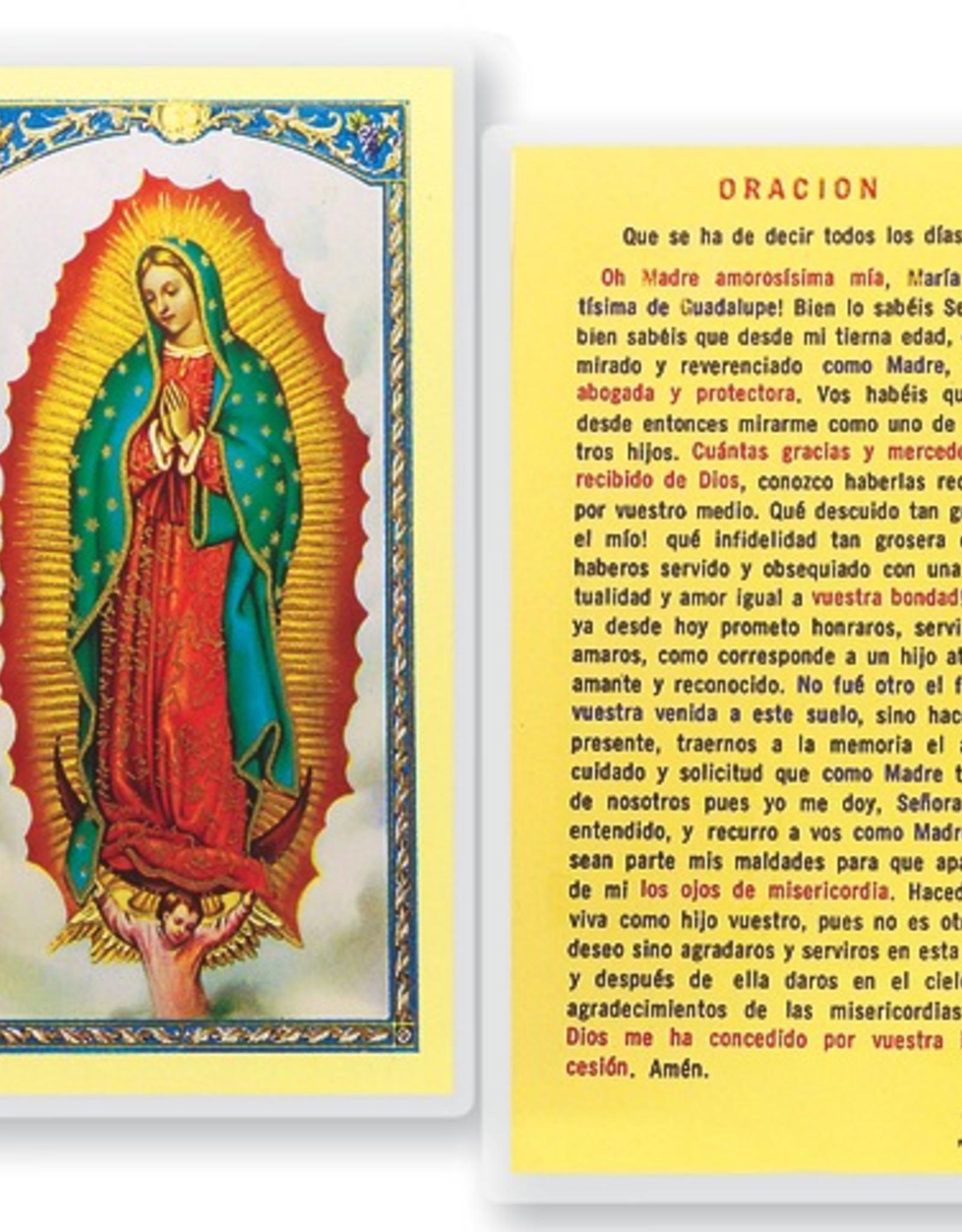 WJ Hirten N.S. de Guadalupe