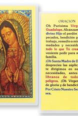 WJ Hirten Oh Purisima Virgen de Guadalupe
