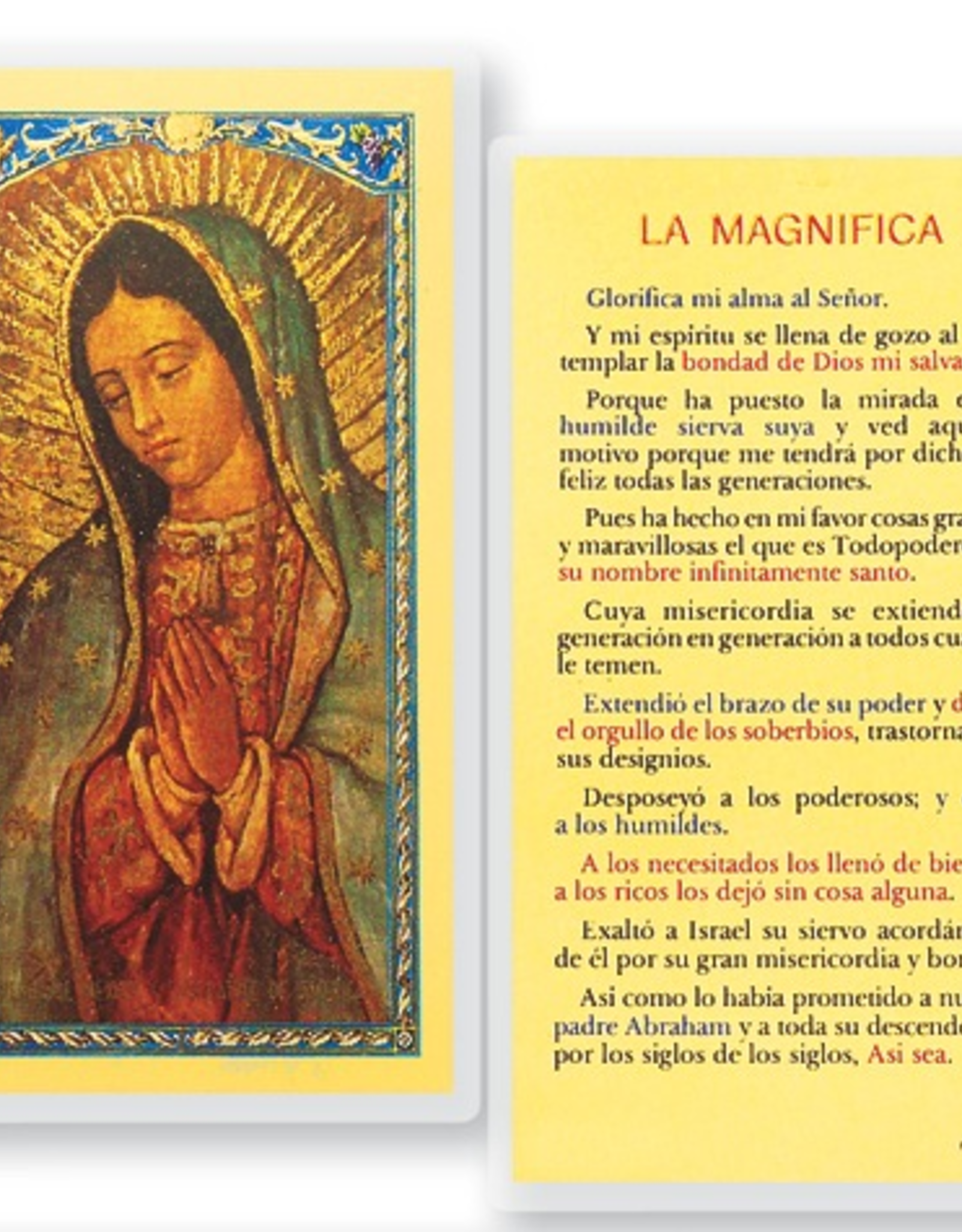 WJ Hirten La Magnifica-Virgin Guadalupe