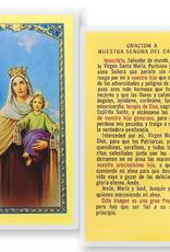 WJ Hirten N.S. del Carmen