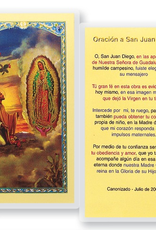 WJ Hirten San Juan Diego w/ Guadalupe