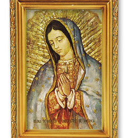 """WJ Hirten Our Lady of Guadalupe 4.5x6.5"""""""
