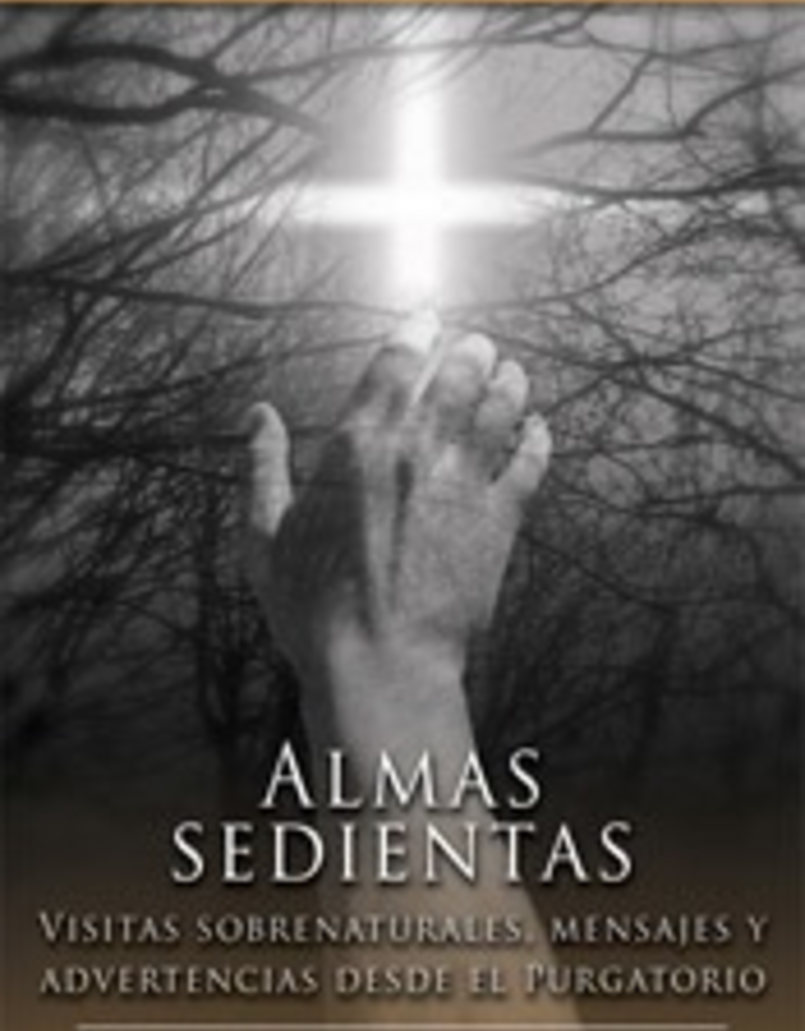 Tan Books Almas sedientas:  Vistas sobrenaturales, mensajes y advertencias desde el purgatorio, Gerard J.M. van den Aardweg