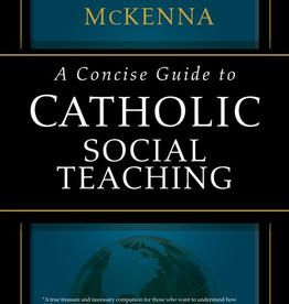 Ave Maria Press A Concise Guide to Catholic Social Teaching, by Kevin McKenna (paperback)