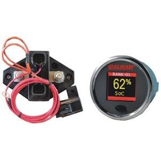 CDI CDI Battery Monitor Kit 12v-48Volt