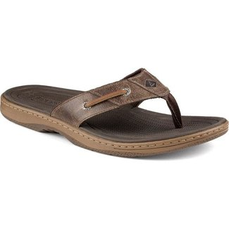 Sperry Baitfish Thong Brown (In Stock Only)