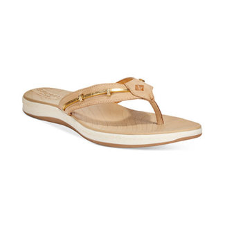 Sperry Seabrook Wave Sandal (In Store Only)