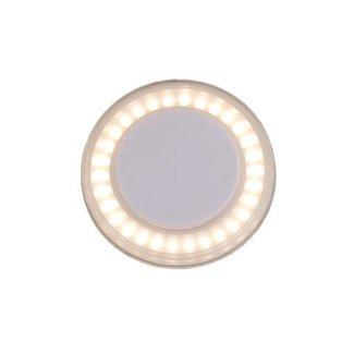 Victory LED Ceiling Light