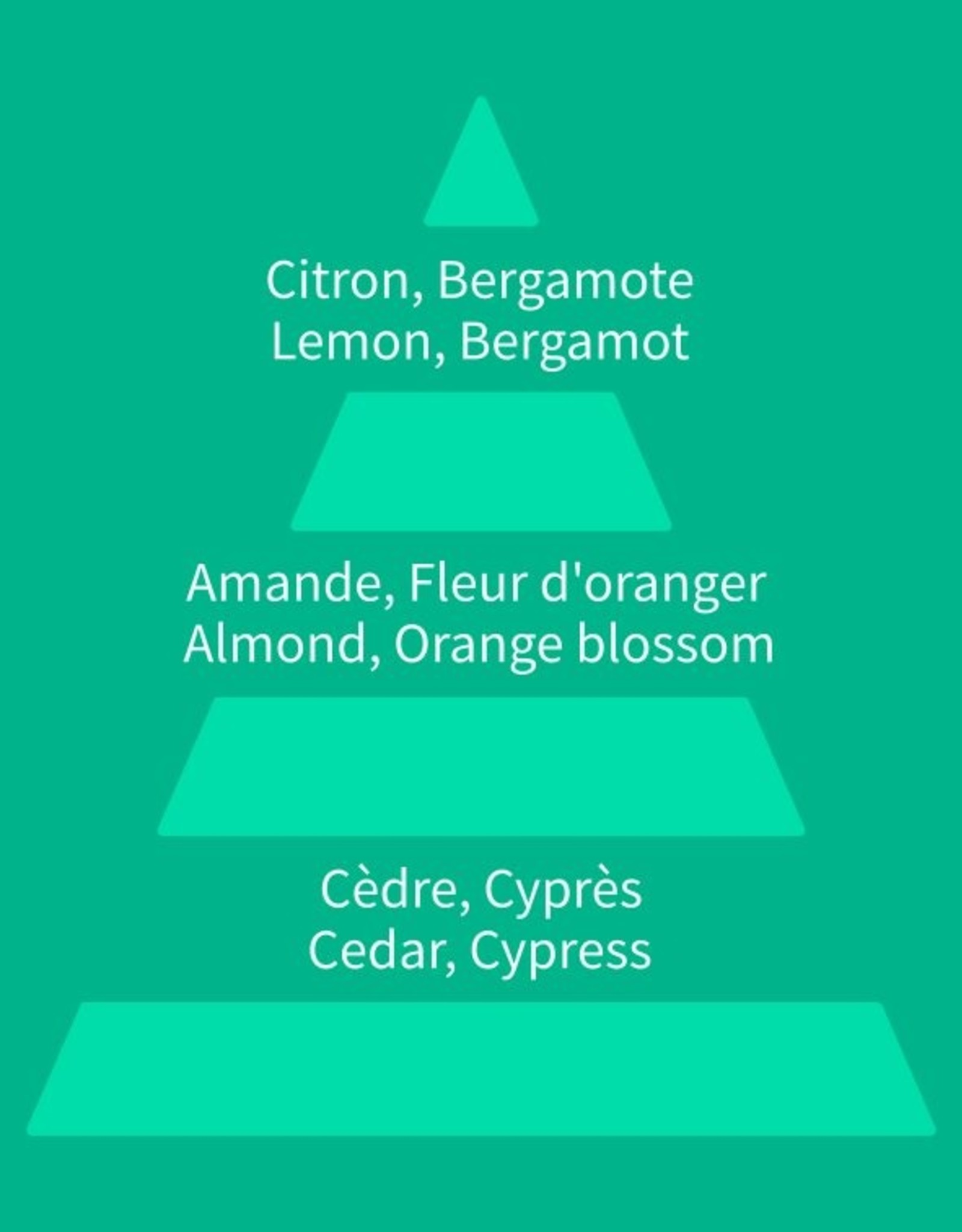 Equivalenza Citrus Floral 013