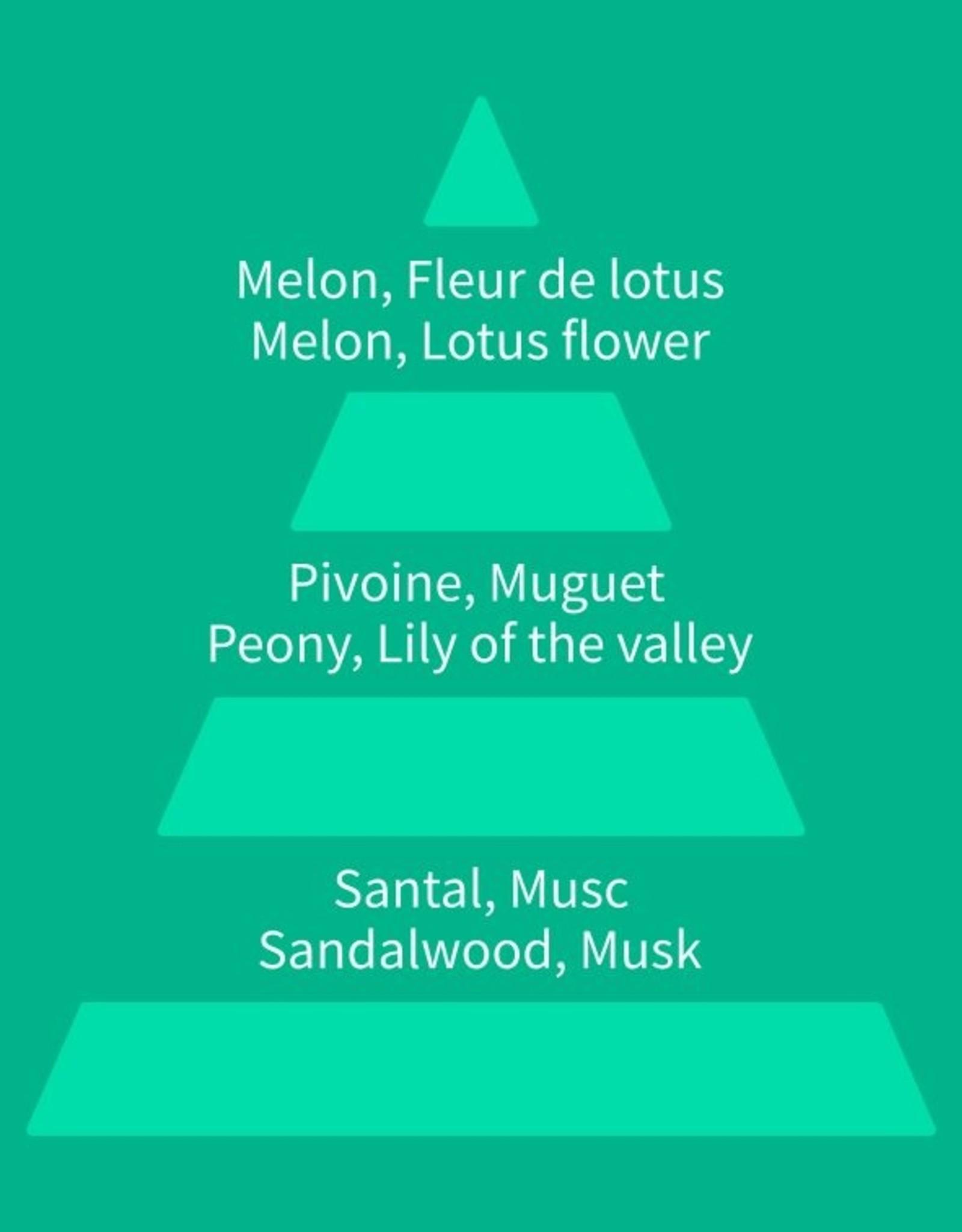 Equivalenza Floral Ozonique 185