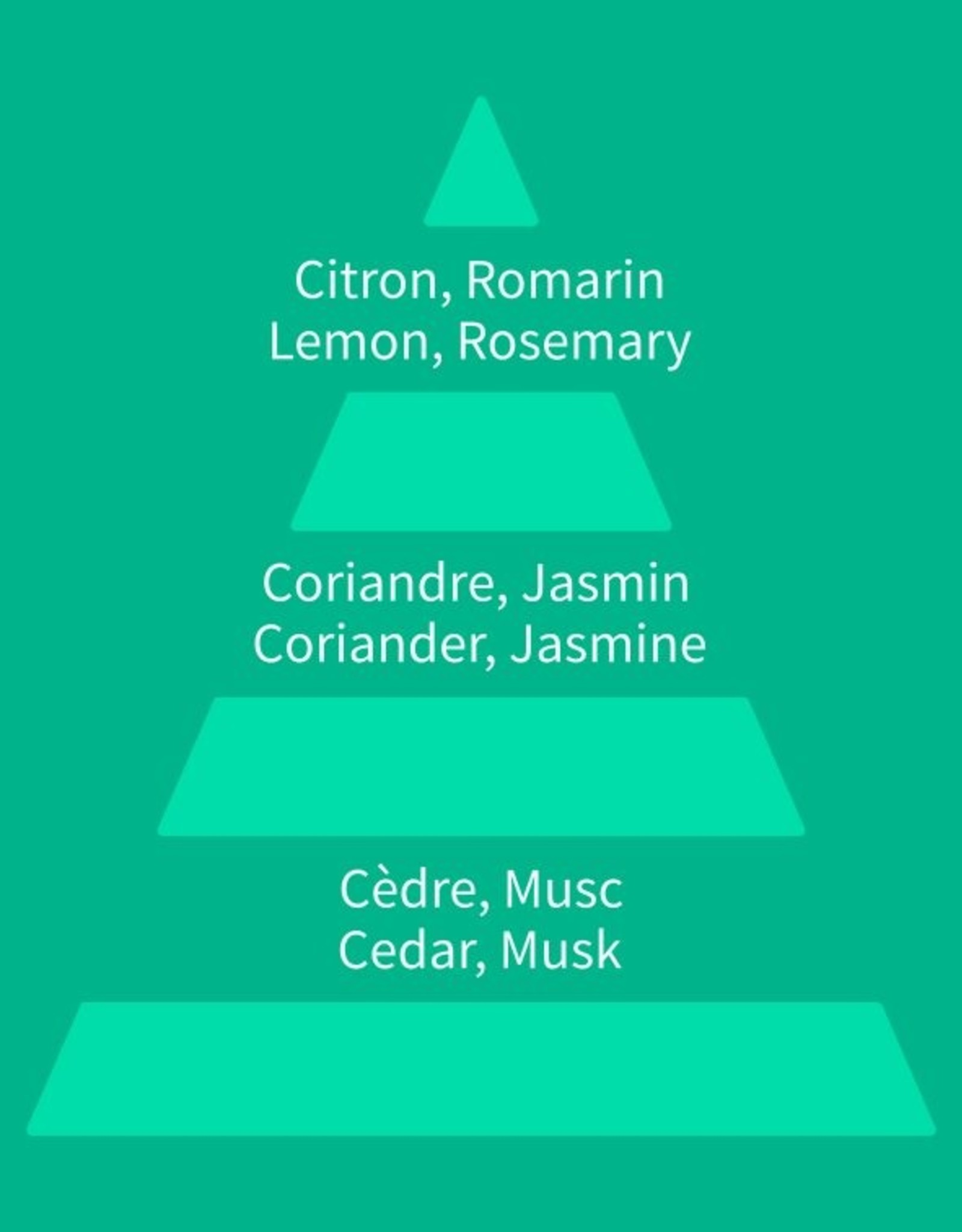 Equivalenza Citrus Aromatic 200