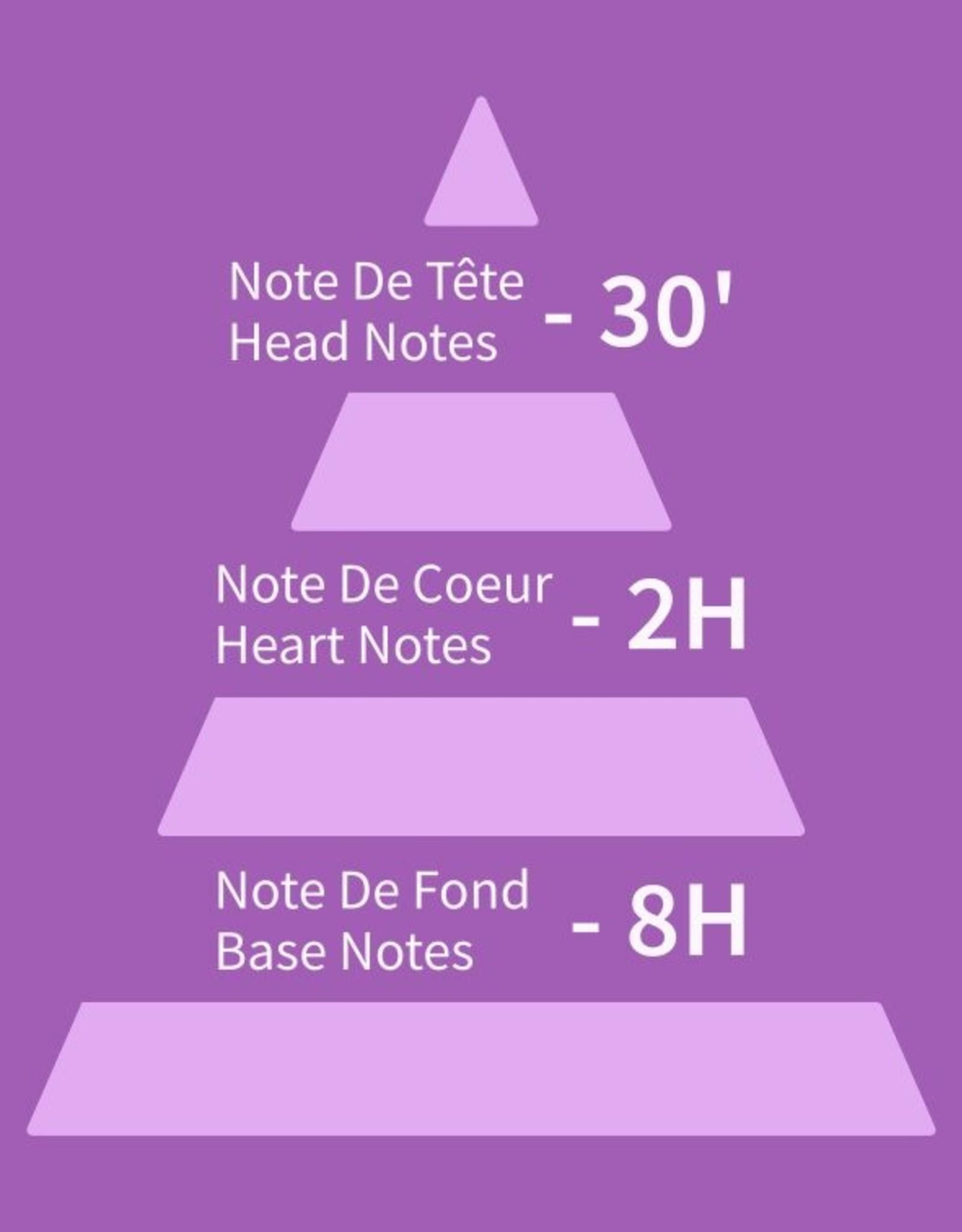 Equivalenza Eau de Toilette Fougère Ambré 237