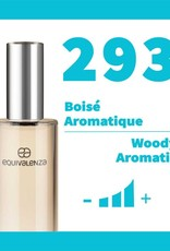 Equivalenza Woody Aromatic 293
