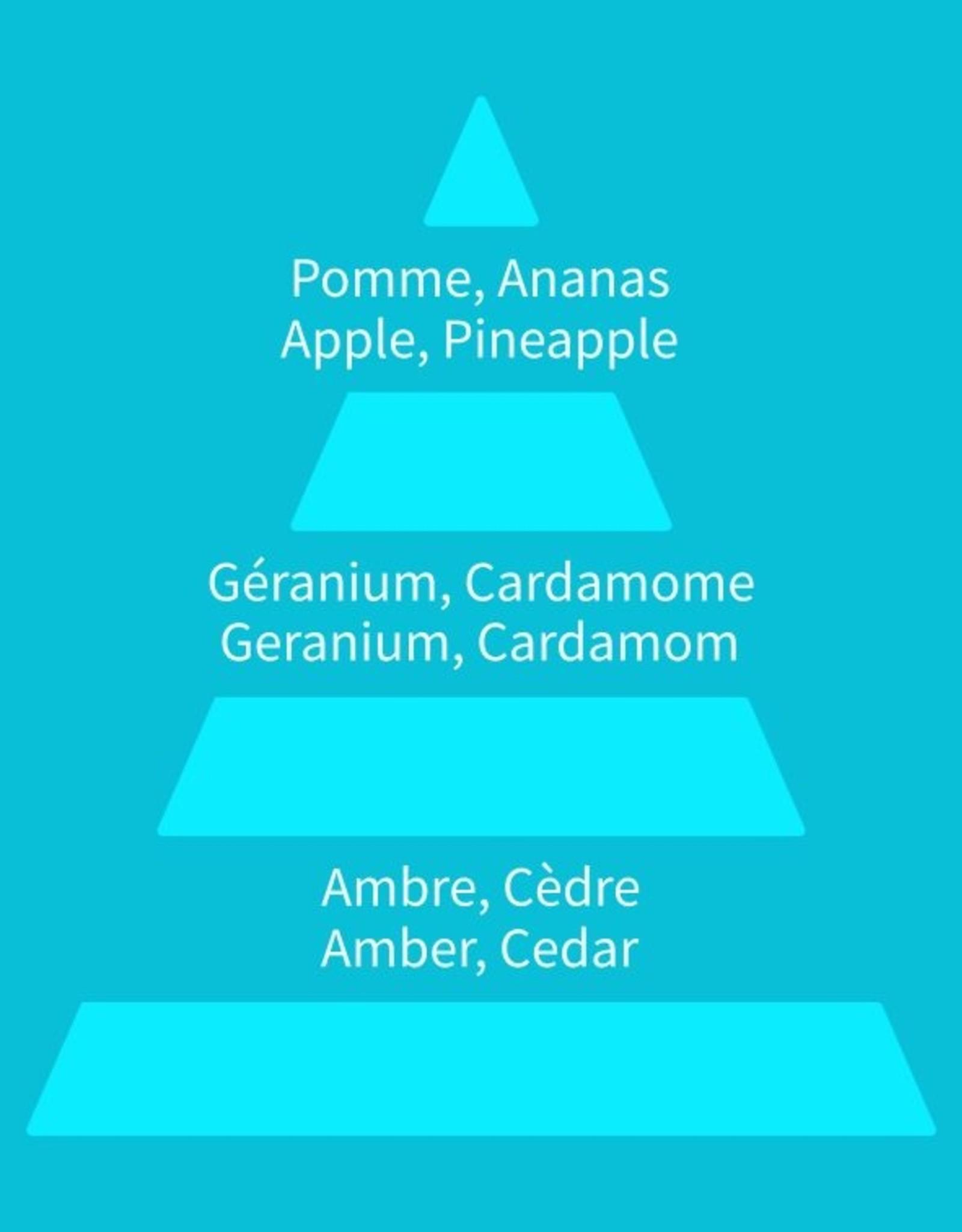 Equivalenza Eau de Parfum Boisé Fruité 303