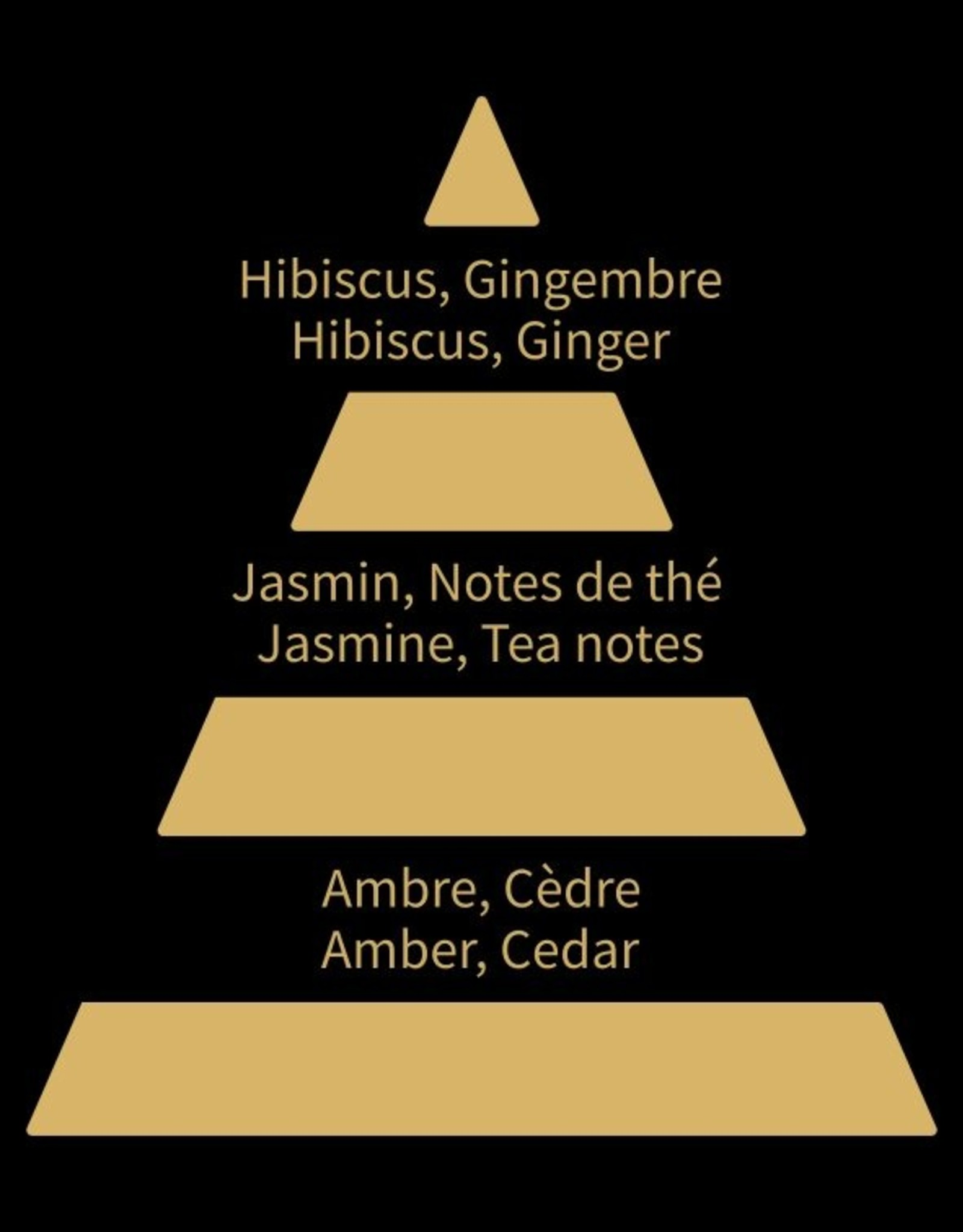 Equivalenza Eau de Parfum Amber