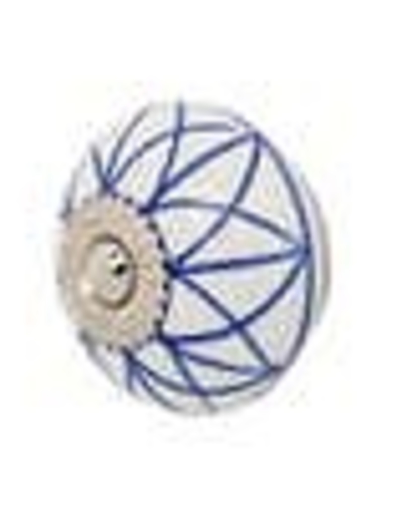 Mela Artisans Chambal Gardens Painted Mandala Ceramic Knob Indigo White