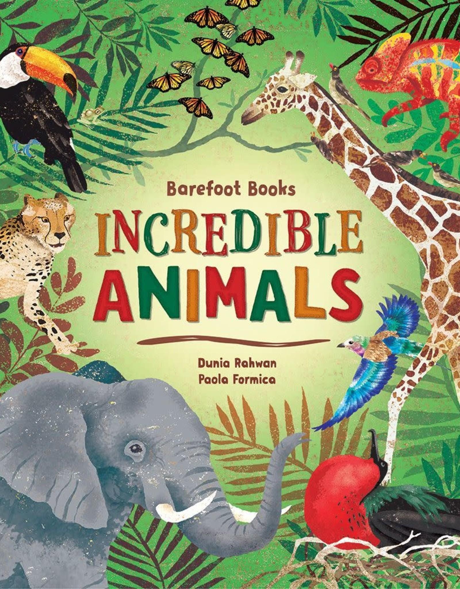 Barefoot Books Barefoot Books Incredible Animals