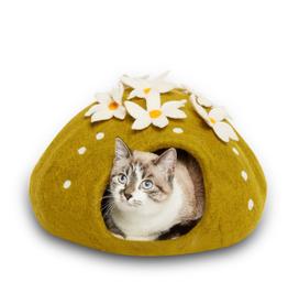 Dharma Dog Karma Cat Cactus Cave