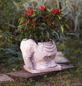 Serrv Elephant Planter