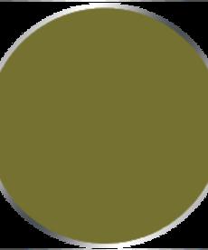 Privateer Press - PIP Privateer Press: Formula P3 - Battledress Green