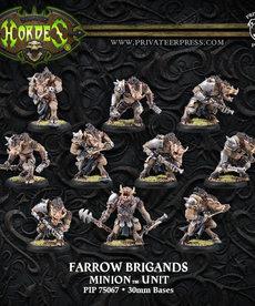 Privateer Press - PIP Hordes - Minions - Farrow Brigands / Farrow Commandos - Unit