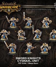 Privateer Press - PIP Sword Knights