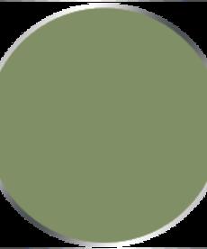 Privateer Press - PIP Privateer Press: Formula P3 - Traitor Green