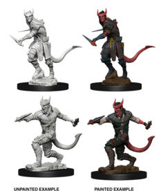 WizKids - WZK D&D: Nolzur's Marvelous Minatures - Tiefling Rogue