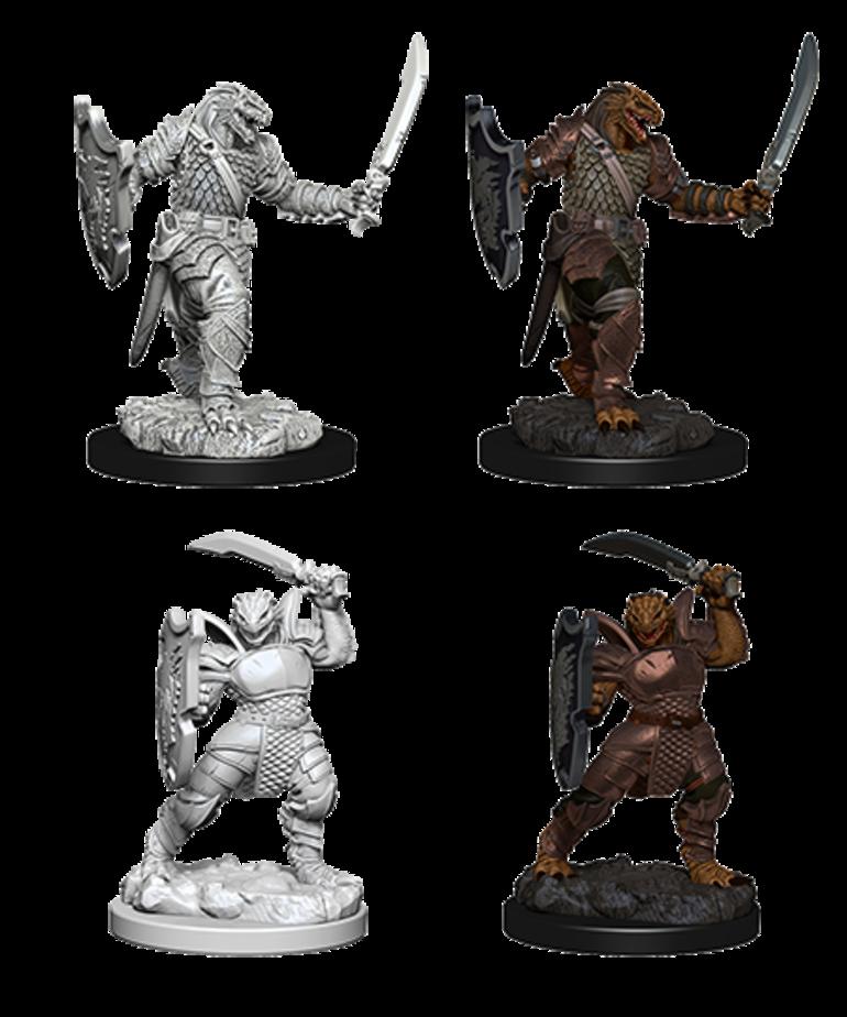 WizKids - WZK D&D: Nolzur's Marvelous Minatures - Dragonborn Paladin