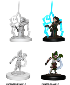 WizKids - WZK Pathfinder Battles: Deep Cuts - Gnome Female Druid