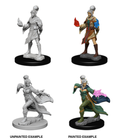 WizKids - WZK Pathfinder Battles: Deep Cuts - Elf Female Sorcerer