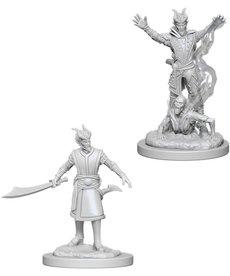 WizKids - WZK D&D: Nolzur's Marvelous Minatures - Male Tiefling Warlock
