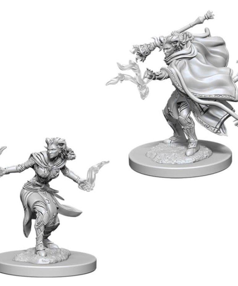 WizKids - WZK D&D: Nolzur's Marvelous Minatures - Female Tiefling Warlock