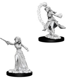 WizKids - WZK Pathfinder Battles: Deep Cuts - Female Human Wizard