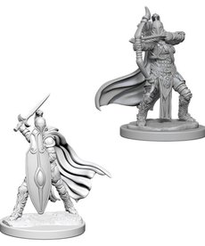 WizKids - WZK Pathfinder Battles: Deep Cuts- Female Knights / Gray Maidens