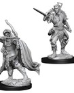 WizKids - WZK D&D - Nolzur's Marvelous Miniatures: Male Elf Rogue