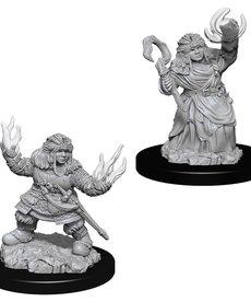 WizKids - WZK Pathfinder Battles - Deep Cuts - Female Dwarf Summoner