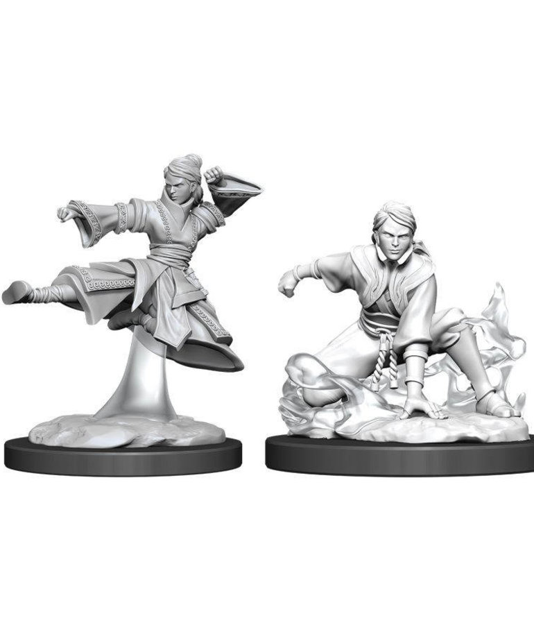 WizKids - WZK D&D: Nolzur's Marvelous Unpainted Miniatures - Human Monk (She/Her/They/Them)