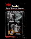 WizKids - WZK D&D: Nolzur's Marvelous Unpainted Miniatures - Lich & Mummy Lord