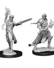 WizKids - WZK Pathfinder Battles: Deep Cuts - Elf Magus (Male)