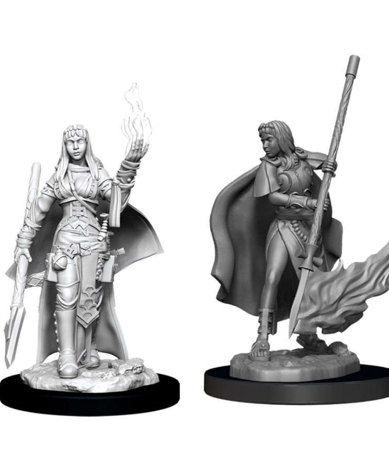 WizKids - WZK Pathfinder Battles: Deep Cuts - Human Oracle (Female)
