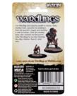 WizKids - WZK Wizkids: Wardlings - Boy Rogue & Monkey