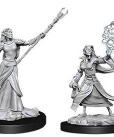 WizKids - WZK D&D: Female Elf Sorcerer