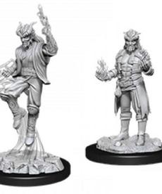 WizKids - WZK D&D: Male Tiefling Sorcerer