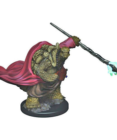 WizKids - WZK D&D: Painted - Male Tortle Monk